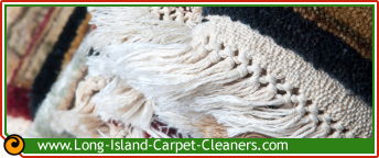 area rug cleaning | oriental rug cleaning